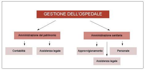 Schema dell'organizzazione gestionale dell'ospedale di San Francesco dopo la morte di Sibilia